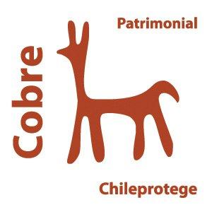Chile Protege